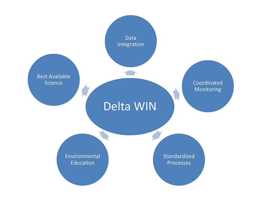 Delta WIN Web Diagram